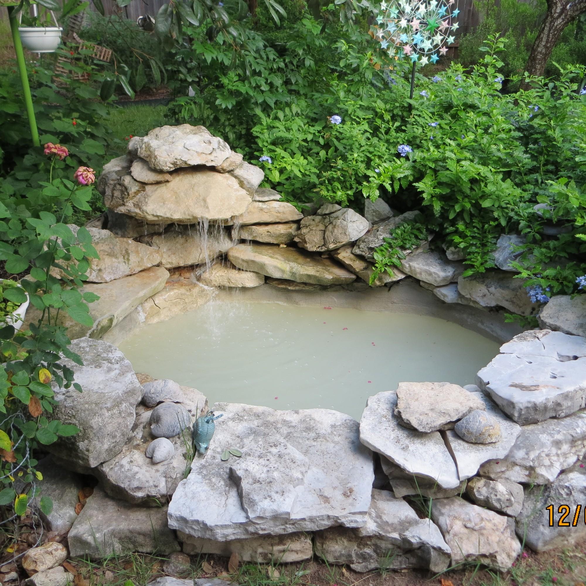 Mom's Pond
